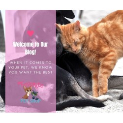 Welcome to Favorite Pet Shop's Blog!