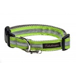Safe and Beautiful Lime Green Reflective Collar Collection