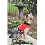 Christmas Gingerbread Fabric Harness and Matching Leash
