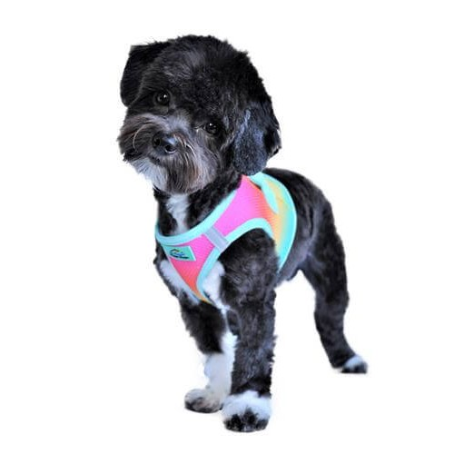 Comfy Ombre Choke Free Harness