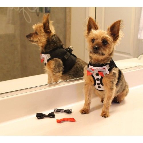 Tuxedo American River Harness with 4 Bows