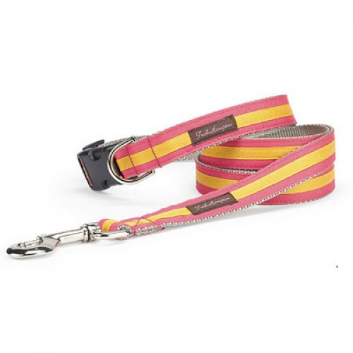 Coral and Gold Stripe Collar Collection
