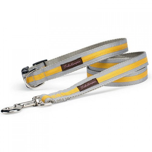 Grey and Gold Stripe Collar Collection