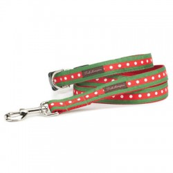 Cute Holiday Dots Collar Collection