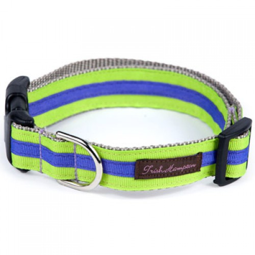 Neon Green and Purple Stripe Collar Collection