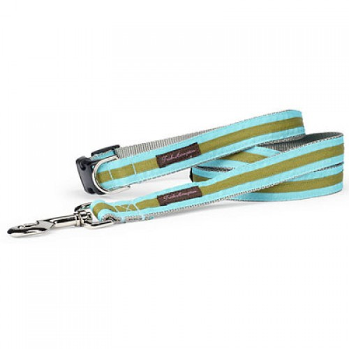 Turquoise and Sage Stripe Collar Collection
