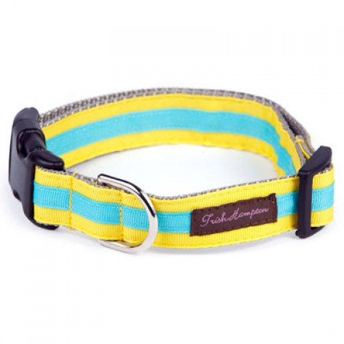 Yellow and Turquoise Stripe Collar Collection