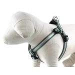 Safe and Beautiful Kelly Green Reflective Collar Collection
