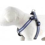 Safe and Beautiful Royal Blue Reflective Collar Collection